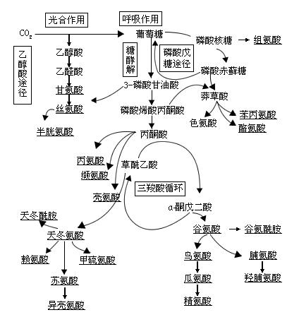 电路 电路图 电子 原理图 424_456