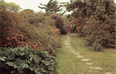 国外:英国园林植物造景设计