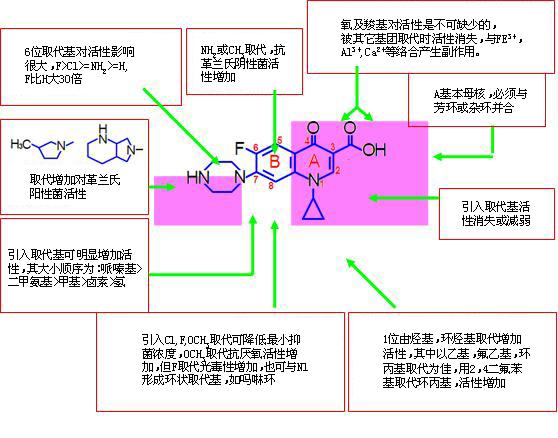 喹诺酮类药物的抗菌机制